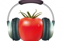 Learn to keep focused using tomatoes and music